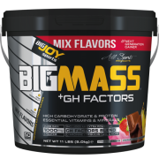 BIGMASS Gainer GH FACTORS Mix Aroma