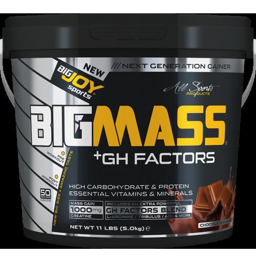 BIGMASS Gainer GH FACTORS