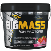 BIGMASS Gainer GH FACTORS Çilek