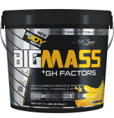 BIGMASS Gainer + GH FACTORS