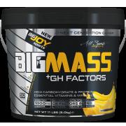 BIGMASS Gainer GH FACTORS Muz