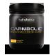 Carnibolic Carnitine Complex (Toz Karnitin)