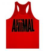 Animal Atlet Kırmızı