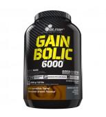 Gain Bolic 6000